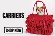 chihuahuacarriersbanner