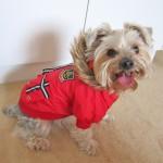 Alfie Couture Designer Pet Apparel - Hilda Hooded Jacket - 2