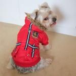 Alfie Couture Designer Pet Apparel - Hilda Hooded Jacket - 3