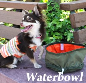 Folding Collapsible Travel Food & Water Bowl for Pets Dogs Cats - UPSIZED (3 Colors) - 4