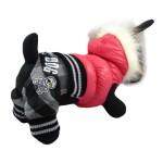 Alfie Couture Designer Pet Apparel - Bam Hooded Jumper - 4
