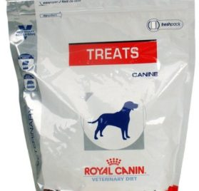 Royal Canin Dog Treats 17.6 oz-1