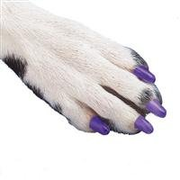 Small Soft Claws for Dogs (Natural, 9mm x 5mm)