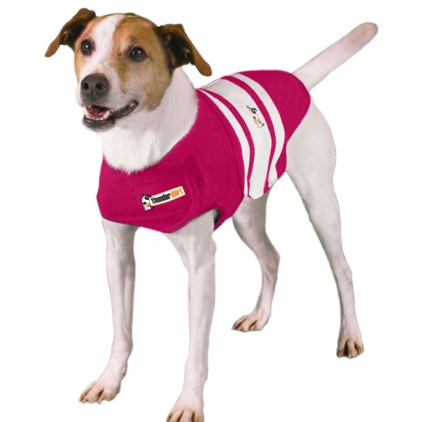 Rugby Shirt For Dog: Thundershirt Dog Shirt Rugby Dog Anxiety Jacket