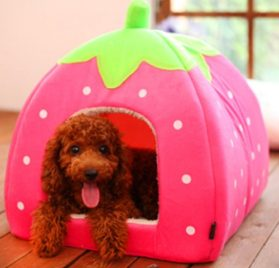 SKL Cotton & Cashmere Strawberry Style Dog Cat House 4 Sizes for Small or Middle pets-2