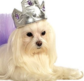Rubies Costume Company Silver Tiara with Purple Stones Pet Costume Accessory, Small/Medium