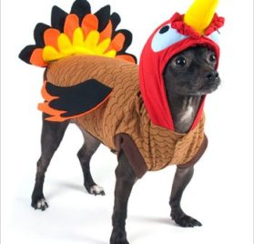 "Turkey Costume for Dogs - Size 5 (14"" l x 18.5"" - 20.5"" g) - 1"