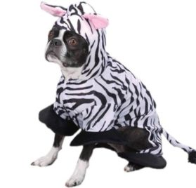 Click to open expanded view Zack & Zoey Zebra Pet Costume