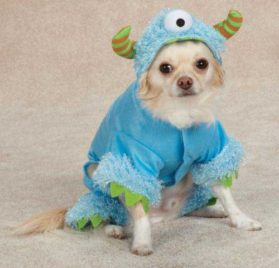 Casual Canine Monster Paws Pet Costume - Blue