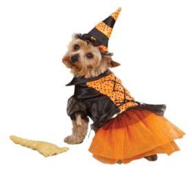 Casual Canine Spellhound Witch Pet Costume - Black - 1