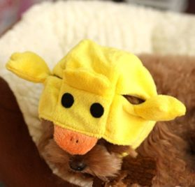 Alfie Pet by Petoga Couture - Qeno Duck Hat Party Costume (for Small Dogs & Cats) - Color: Yellow - 2