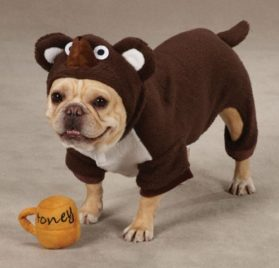Zack & Zoey Polyester Lil Honey Bear Dog Costume, Small, Brown - 2