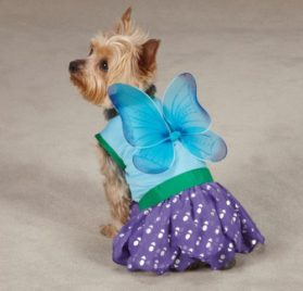 Casual Canine Woodland Fairy Dog Costume - 2