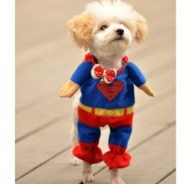 Alfie Pet by Petoga Couture - Superhero Costume Superman - 5