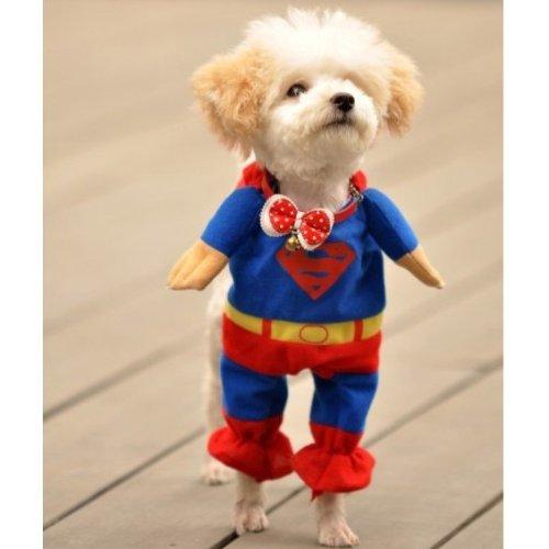 Alfie Pet by Petoga Couture - Superhero Costume Superman - 5  sc 1 st  Chihuahua Kingdom & Alfie Pet by Petoga Couture - Superhero Costume Superman