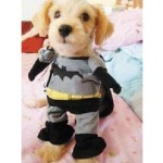 Alfie Pet by Petoga Couture - Superhero Costume Batman - 6