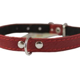 "Genuine Leather Felt Padded Dog Collar X-Small 11""x1/2"" Wide Fits 8""-10"" Neck, Chihuahua, Puppies 2"