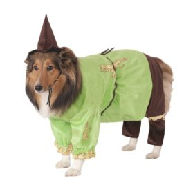 Wizard of Oz Scarecrow Dog Costume-1
