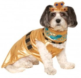 Rubies Costume Company Cleopatra Pet Costume, Small
