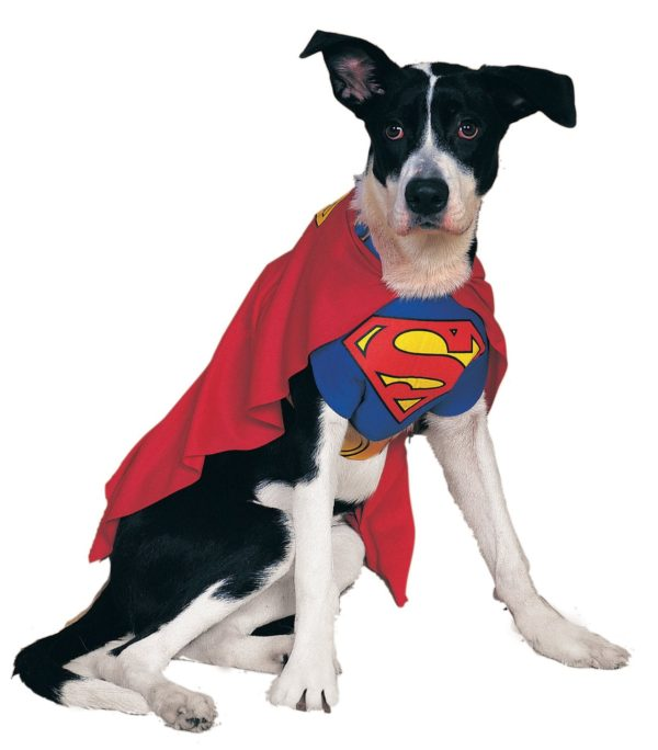 Rubies Costume DC Heroes and Villains Collection Pet Costume - Superman-1