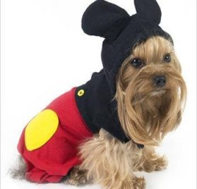 """Mouse """"Mickey"""" Costume For Dogs - Size 5 (14"""" l x 18.5"""" - 20.5"""" g) - 1"""