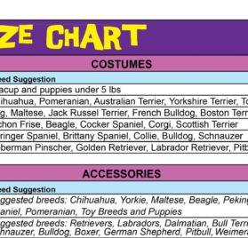 Wizard of Oz Dorothy Dog Costume-2