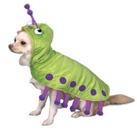 Zack & Zoey Cutiepillar Pet Costume-1
