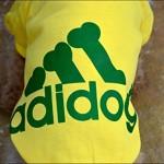 Angel Mall Adidog Hoodie Pet Clothes Dog Sweater Puppy Sweatshirt Warm Small Coat Christmas Gift 1-pc Set (Yellow)-2