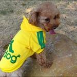 Angel Mall Adidog Hoodie Pet Clothes Dog Sweater Puppy Sweatshirt Warm Small Coat Christmas Gift 1-pc Set (Yellow)-3