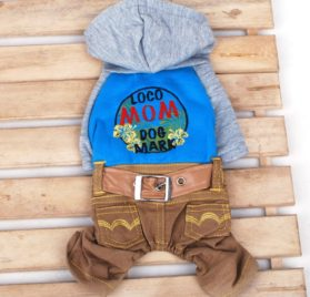 Pet Cat Dog Hooded Sweater Jeans Embroidered Flower Coat Jumpsuit Small Boy Girl Dog Clothes XS S M L XL-1