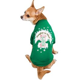Zack & Zoey Naughty or Nice Pet Tee Shirt - Green-1