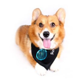 Happy Puppy Designer Dog Accessory - Venetian-Blind Sunglasses Bandana - Color: Black, Size: M-1