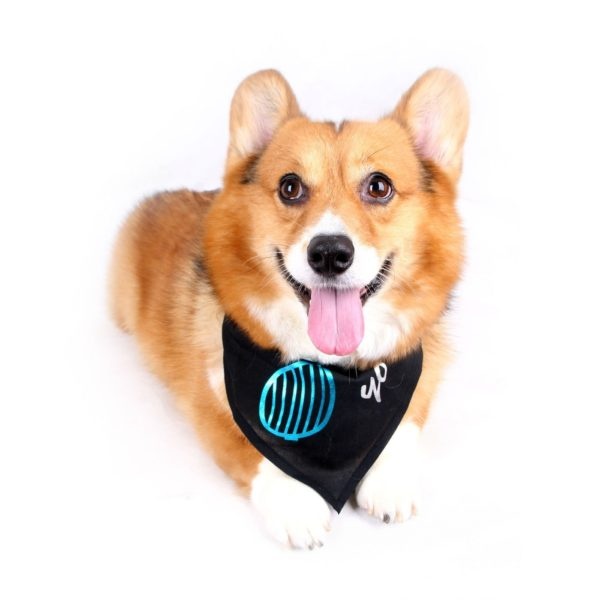 Happy Puppy Designer Dog Accessory - Venetian-Blind Sunglasses Bandana - Color: Black, Size: M-1