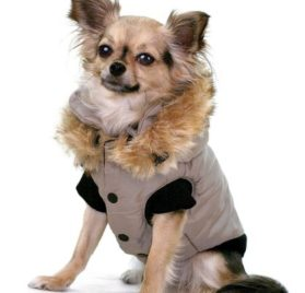 "Winter Dog Vest with Hood - Grey - SM (11""-13.5"" girth, 8""-10"" length)"