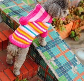 Striped Pet Dog Hoodie Sweater Pullover Rose-carmine - 2