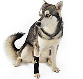 Canine Dogs Compression Sleeve Injury Support fatigue, joint, tendon and ligament laxity (instability) - 2