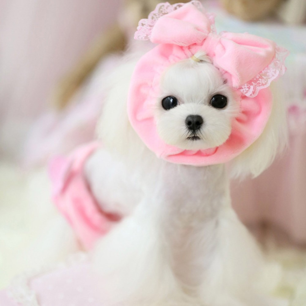 Alfie Pet by Petoga Couture - Brittany Neck Warmer - 1