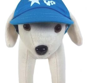 UP Collection Star Printed Cap for Dogs, Aqua Blue - 1