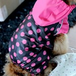 Dogloveit Waterproof Polka Dot Rain Coat Dog Clothes For Puppy Cat - 2
