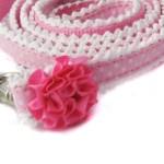Paisley Ruffle Collar and Leash Set 3