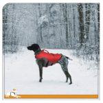 Kurgo Atomic Drop Dog Life Jacket 4