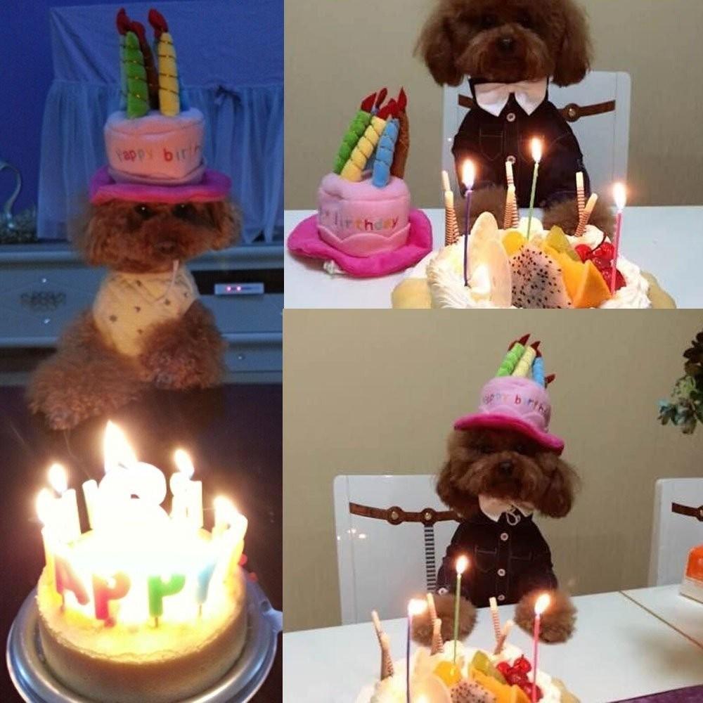Soft fleece dogs birthday hats pets puppy cosplay cap