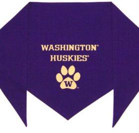 "University of Washington Huskies Bandana (S) Ties on 9"" - 10"" neck - 1"