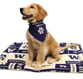 "University of Washington Huskies Bandana (S) Ties on 9"" - 10"" neck - 2"