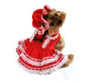 Miss Santa Baby Dog Costume Size: Medium