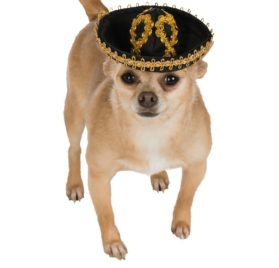 Black & Gold Sombrero Pet Hat - 1