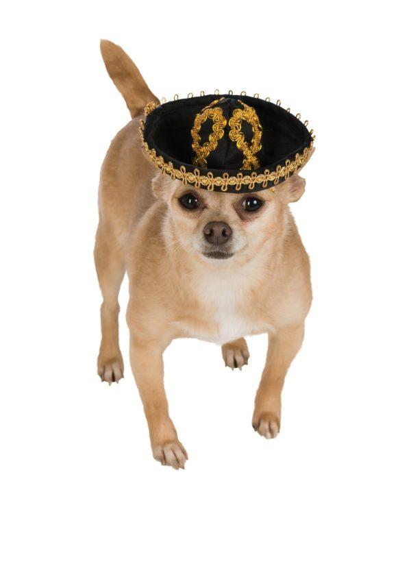 Black & Gold Sombrero Pet Hat - 1