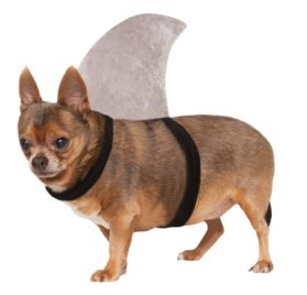 Shark Fin Dog Costume, Small/Medium - 1