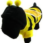 Alfie Couture Designer Pet Apparel - Bumble Bee Costume - 2