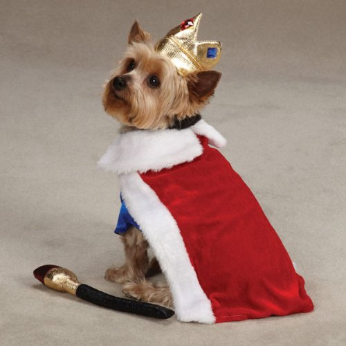 Zack Amp Zoey Royal Pup Pet Costume Red Chihuahua Kingdom